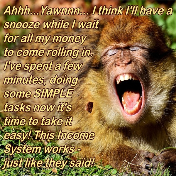 monkey laughing because he has financial success