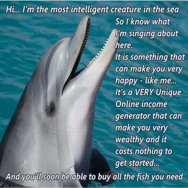 dolphin singing about his financial success